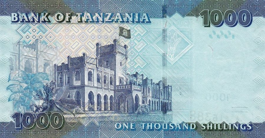 back of Tanzania currency